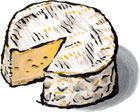 Camembert Cheese from Normandy