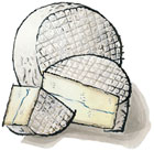 Coppinger Cheese from Sequatchie Cove Creamery