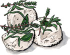 City Goat Cheese from Zingerman's Creamery