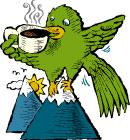 Guatemalan Antigua Coffee
