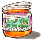 White Tupelo Honey